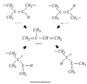 Figura 1.11. Diagrama que presenta el isomerismo cis y trans en polímeros diénicos (caso del poli-isopreno)