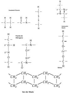 Figura 1.13. Tipos posibles de uniones en los polímeros